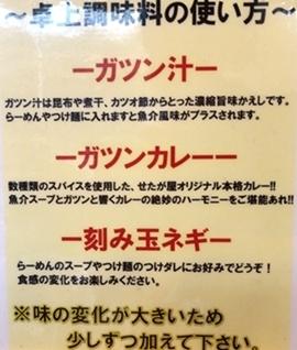 せたがや品川 (6).JPG