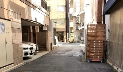 煮干乱舞 (2).JPG